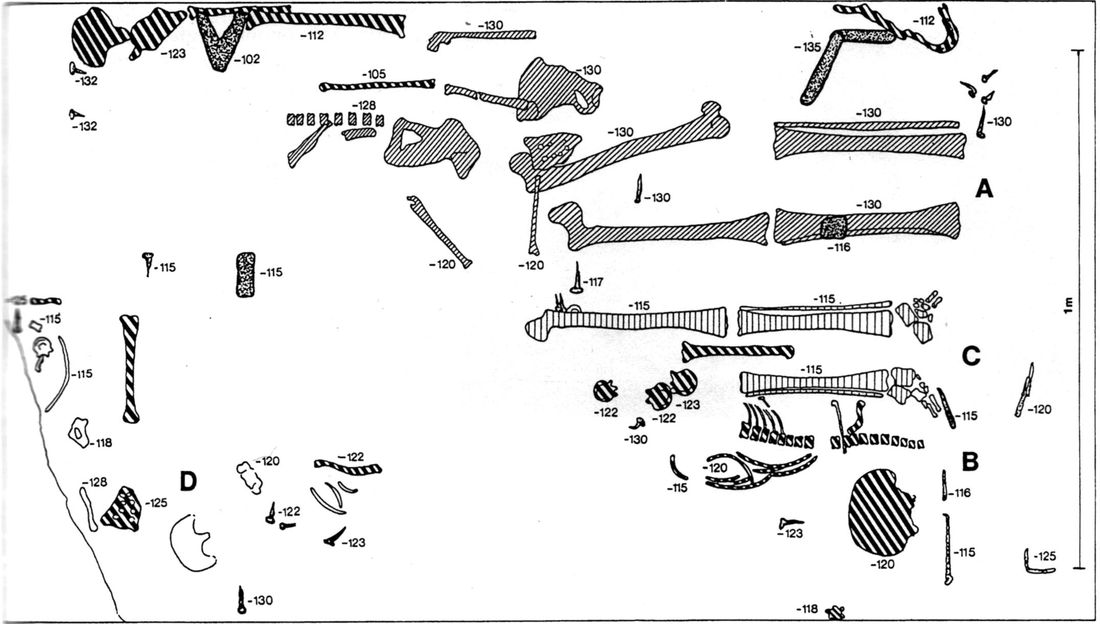 Az 1969-ben Kralovánszky Alán által feltárt sír három csontváza